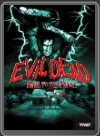 PC - EVIL DEAD: HAIL TO THE KING