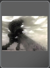 shadow_of_the_colossus - PS2 - Foto 257331